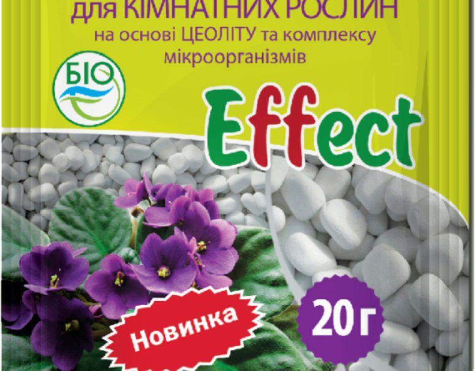 Feeding for houseplants Effect